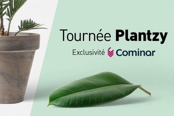 Cominar annonce la tournée Plantzy!